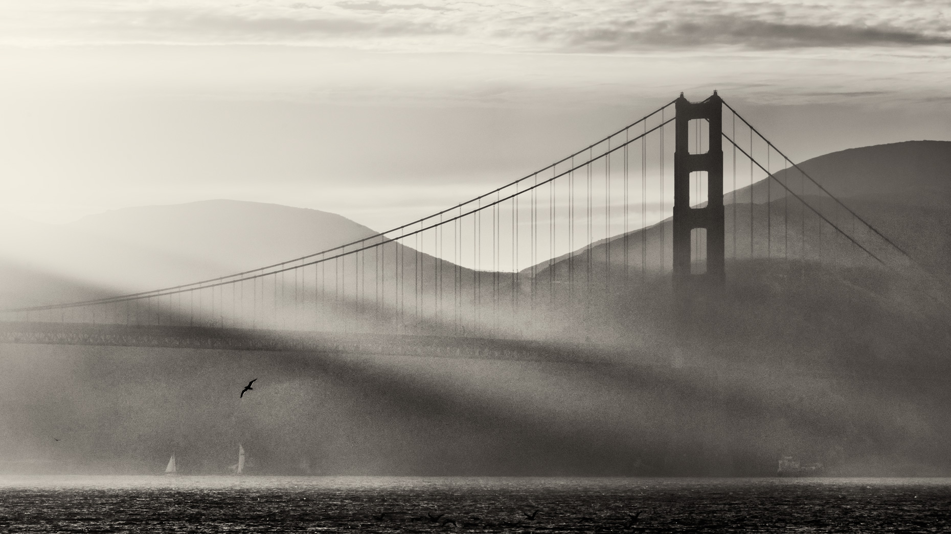 Golden-gate-bridge-streaming-light